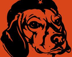 Beagle Revolution