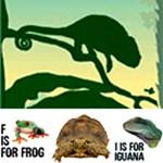 Reptile & Amphibian Gifts