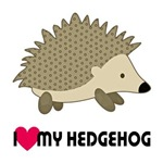 I Love My Hedgehog