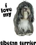Tibetan Terrier Lover