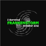 I Survived Frankenstorm October 2012