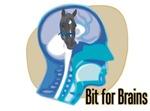 Bit for Brains (2)
