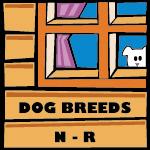 Dog Breeds N - R
