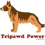 Tripawd Power (Wyatt Ray)