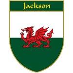 Jackson Welsh Flag Shield