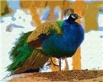 Peacock Gouache Style Photo Art