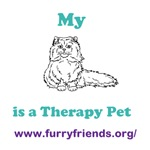Therapy Cat