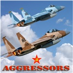 Air Force F-15 Aggressors