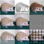 Tic Tac Toe Hedgehog