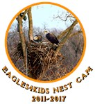 Nest Remembrance