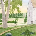 Summer Meadow and Barn