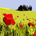 Abstract Floral Landscape Red Poppies