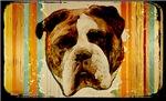 Bulldog Grunge