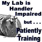 Lab Agility