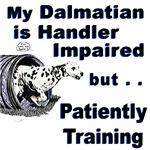 Dalmatian Agility