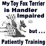 Toy Fox Terrier Agility