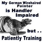 German Wirehd Pointer Agility