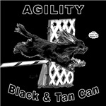 Black & Tan Cavalier Agility