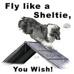 Shelties Fly- Agility