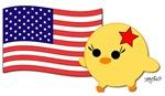 American Flag Soychick