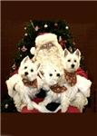 Santa and Westies