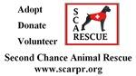 SCARPR Sponsor