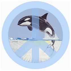 Orca Peace
