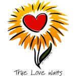 Flower True Love Waits