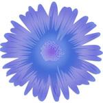 Just A Flower Purple