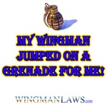 My Wingman Jumped on a Grenade for ME!