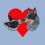 Australian Cattle Dog Kiss