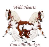 WILD HEARTS Pinto Ponies Design