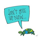 Turtle of Perseverance