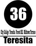 36 Teresita (Classic)