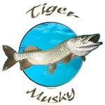 Tiger musky