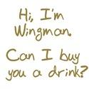 Hi, I'm Wingman.