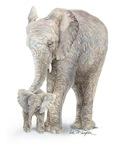 Mother & Baby Elephant