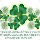 Shamrocks Irish T-shirts & Gifts