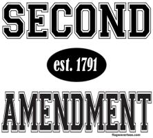 2nd AMENDMENT/SECOND AMENDMENT T-SHIRTS & GIFTS