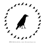 Crow with Circle Merchandise