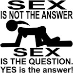Sex Is The Question Yes Is The Answer