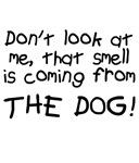 Baby Blame Dog