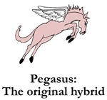 Pegasus Original Hybrid
