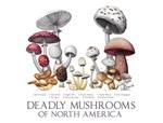 Deadly Mushrooms of North America