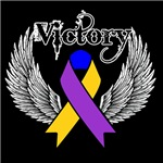 Victory Bladder Cancer Shirts and Gifts