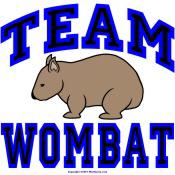 Team Wombat IV