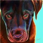 Chocolate Pup