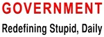 Stupid Government