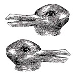 Duck/rabbit illusion