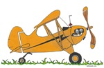 Cub Airplane